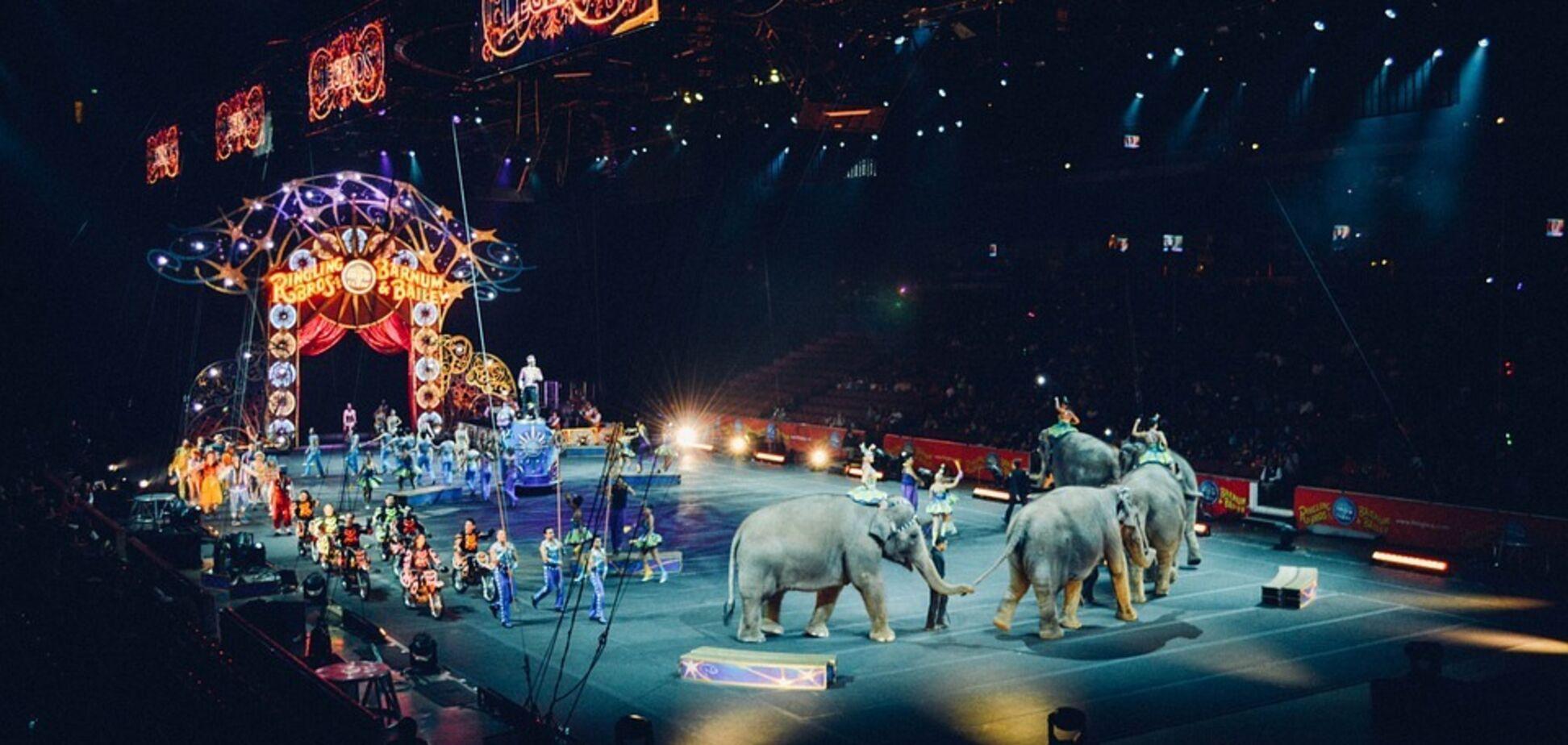 Еще в одном городе Украины запретили цирки с животными