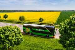 Найбільший автобусний лоукостер Європи планує зайти в Україну
