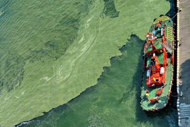 Иллюстрация. Зеленое море