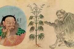Курили 2,5 тисячі років тому: де вперше використовували коноплю як наркотик