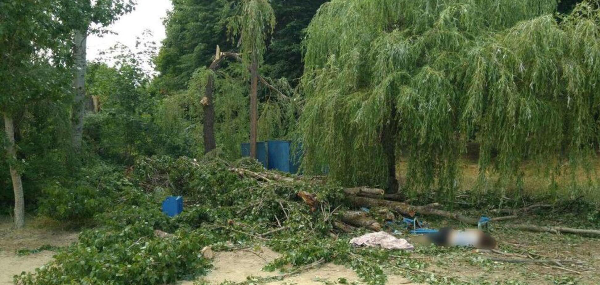 На Харьковщине в санатории дерево раздавило людей: фото 18+