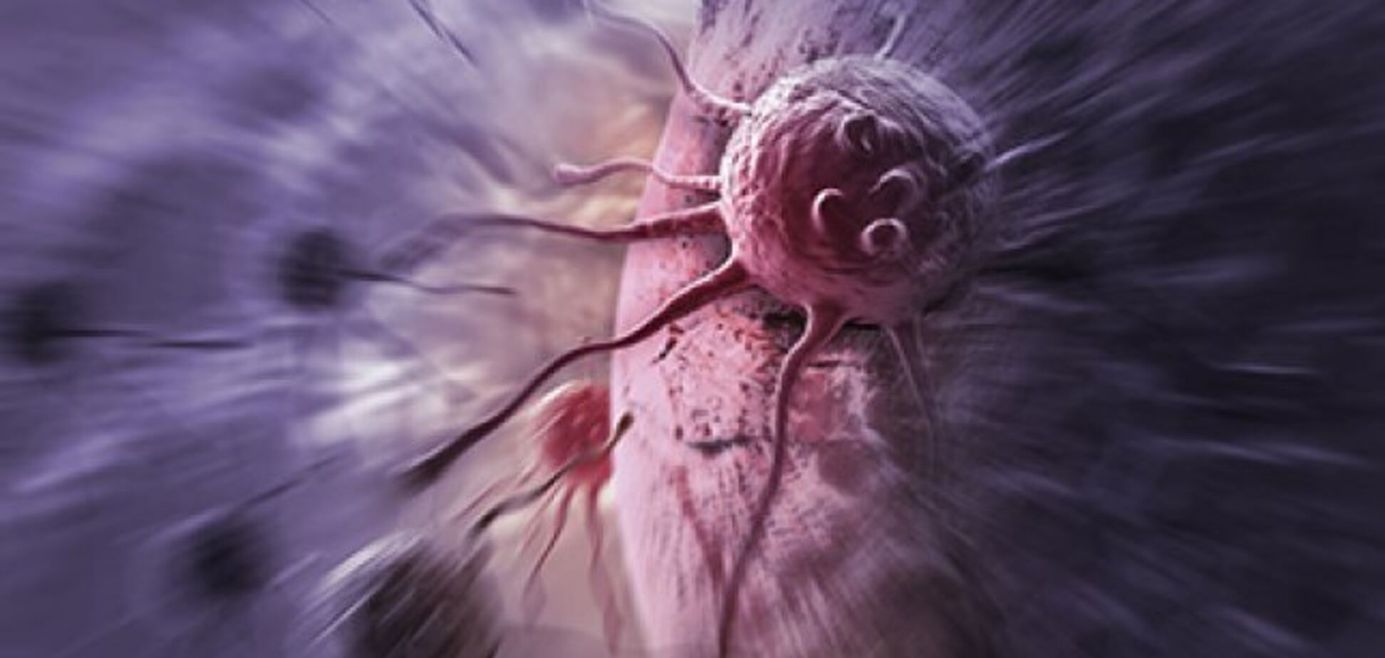 У США винайшли нові ліки від раку