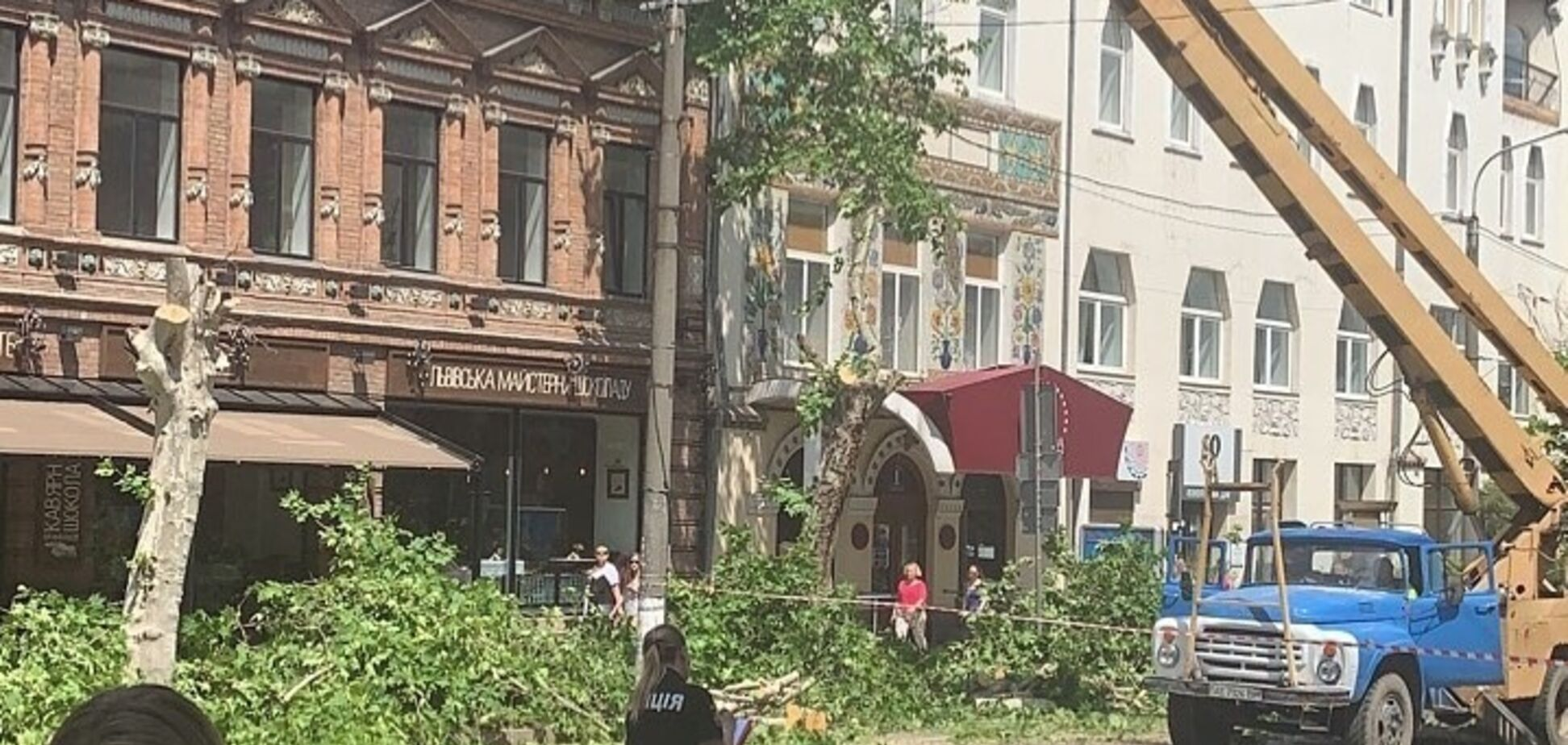 'Спасите деревья Днепра!' Активист обратилась к Зеленскому