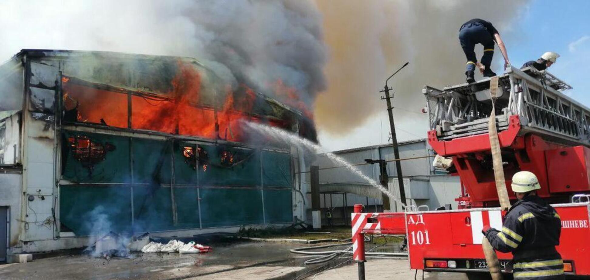 Пожар в Василькове