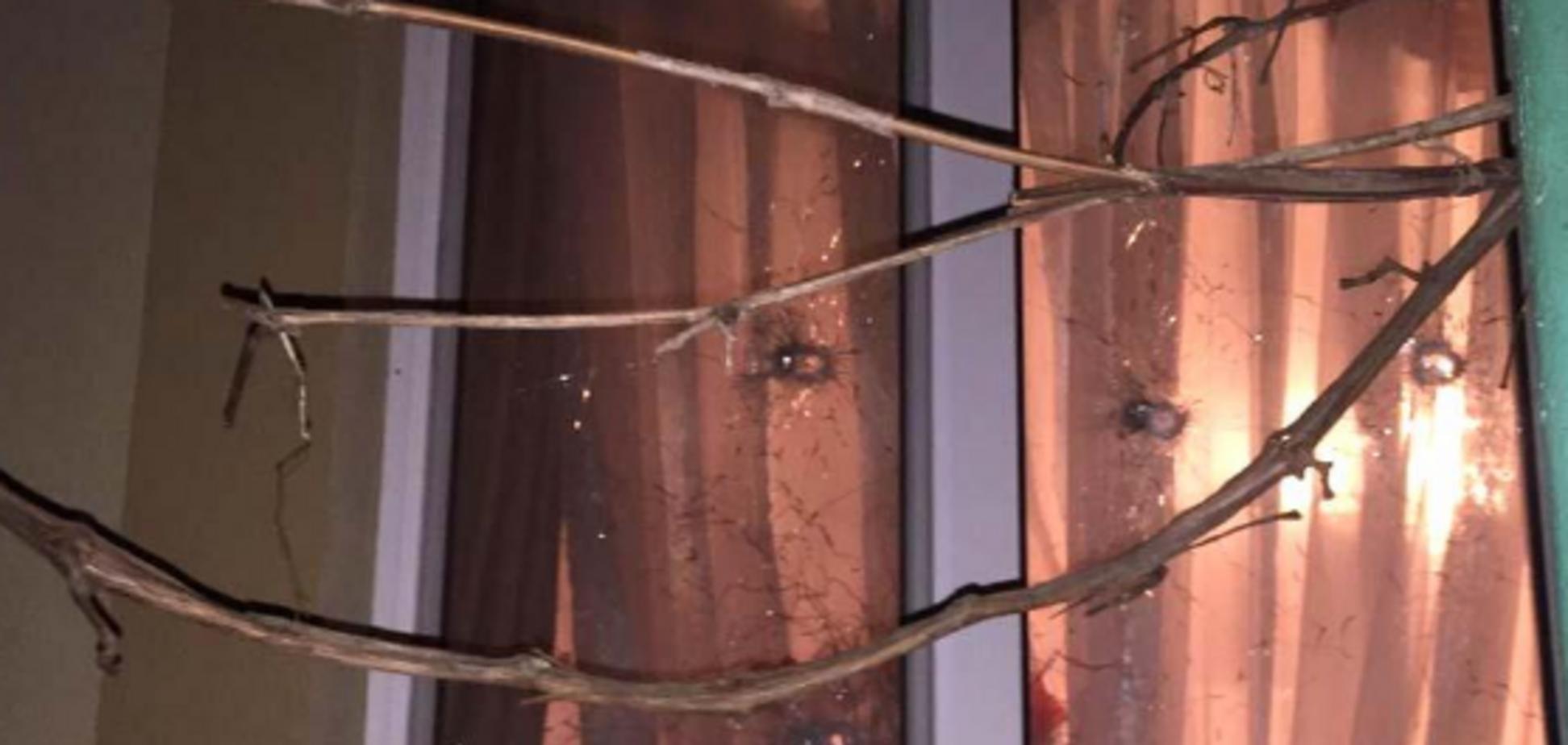 Нашли в сейфе у деда: на Ривненщине взрывом убило двоих детей