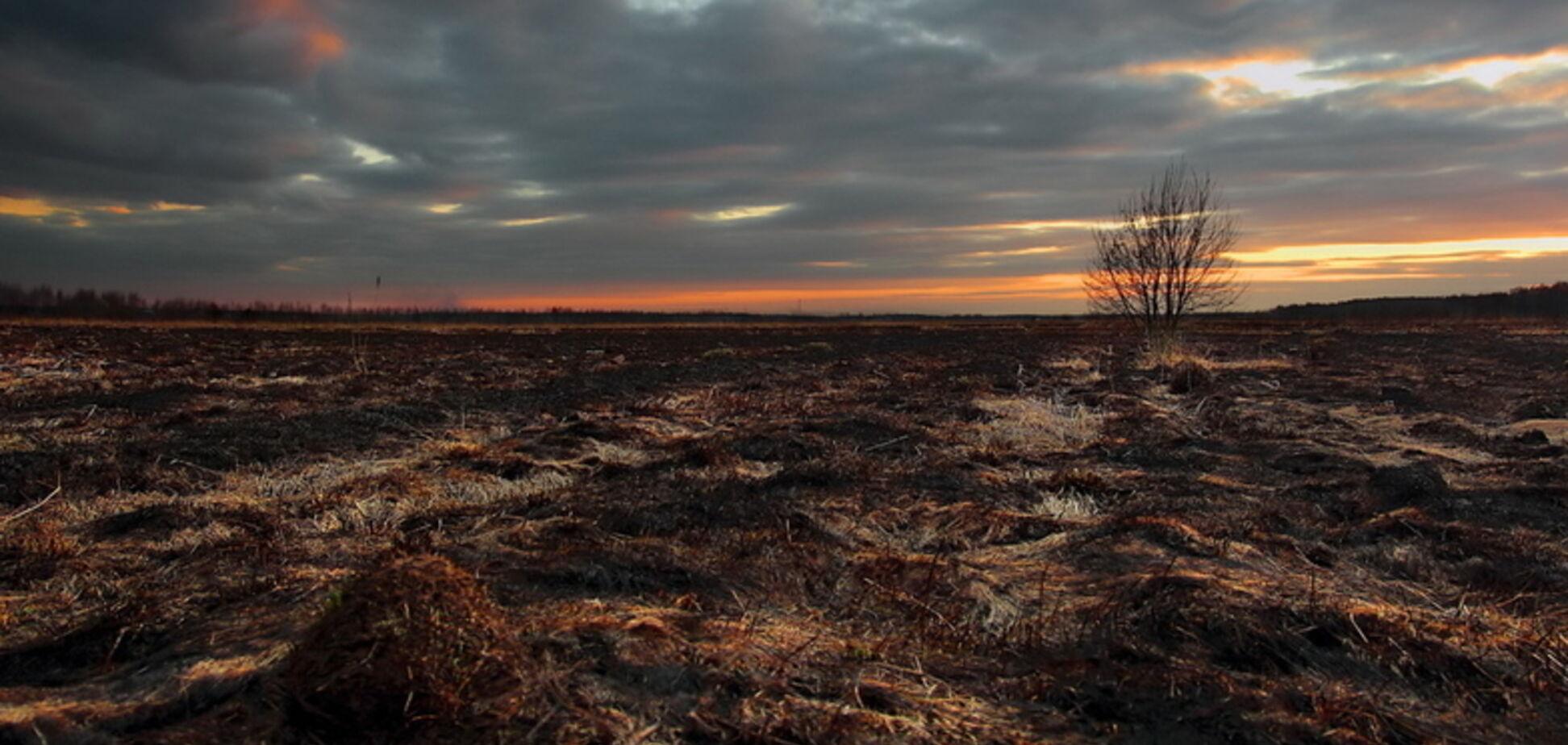 Недава разработал десятилетнюю госпрограмму восстановления экосистемы Донбасса