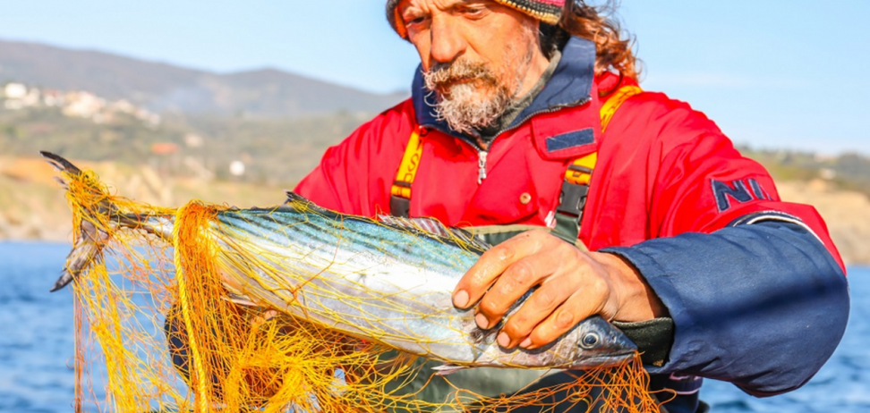 День рибалки – традиції і кращі вітання