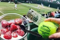 Wimbledon-2019: статистика закулісного життя турніру Великого шолома