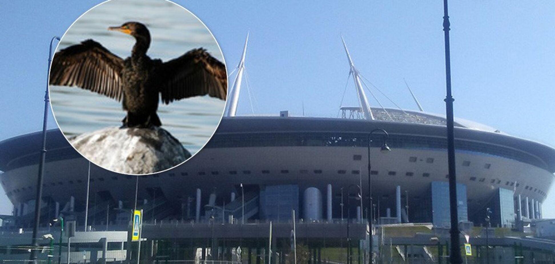 'Передсмертні крики' зі стадіону налякали росіян