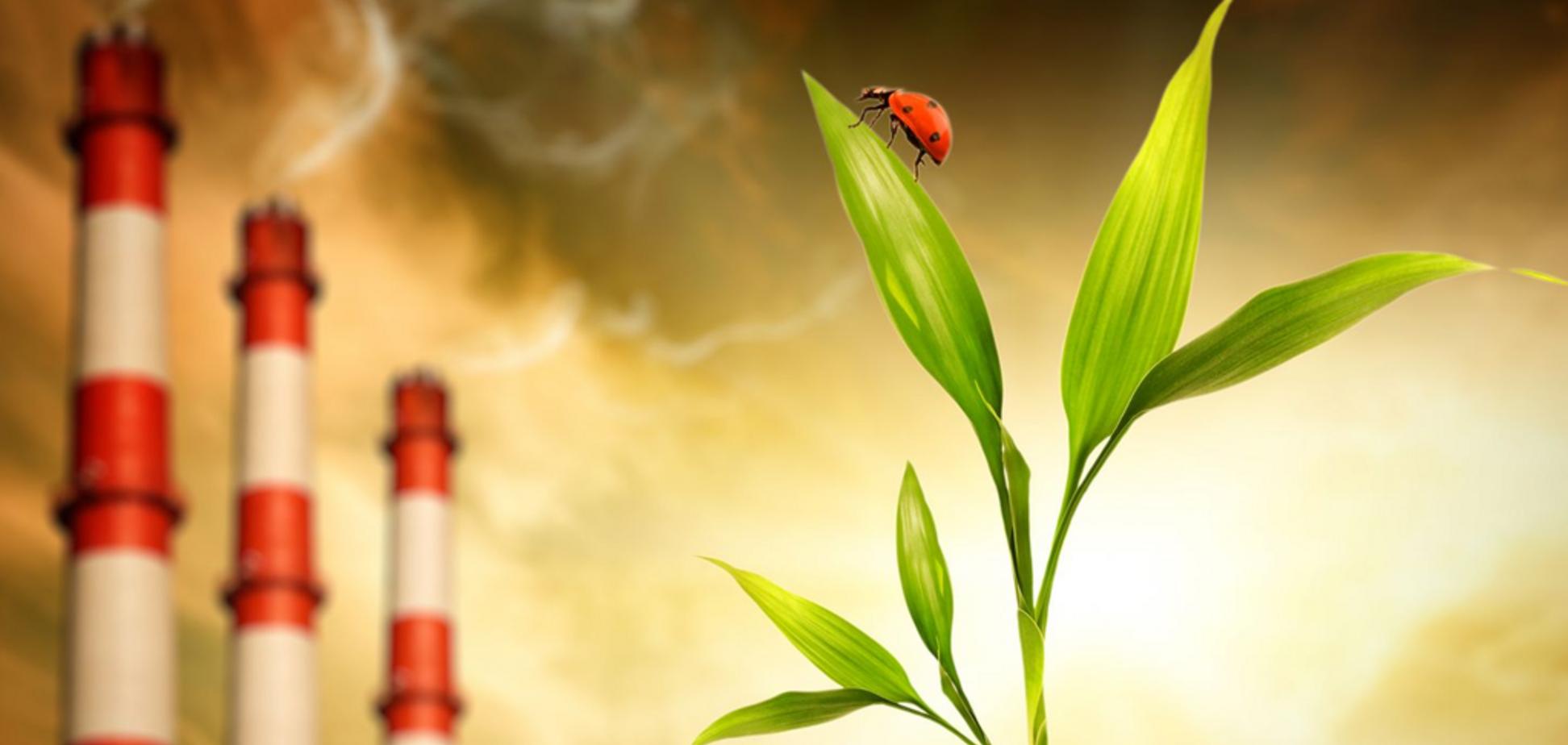 Экологию используют с целью шантажа бизнеса - эксперт