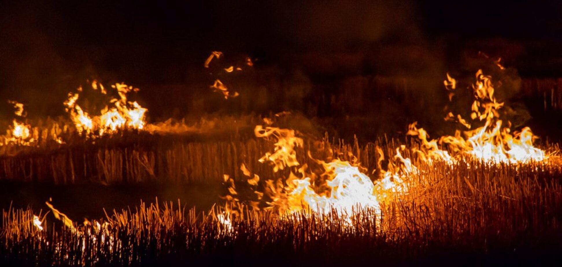 В Днепре произошел масштабный пожар: фото и видео огненного 'ада'