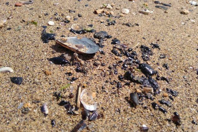 Пляжи стали черными: в Одессе произошла новая катастрофа