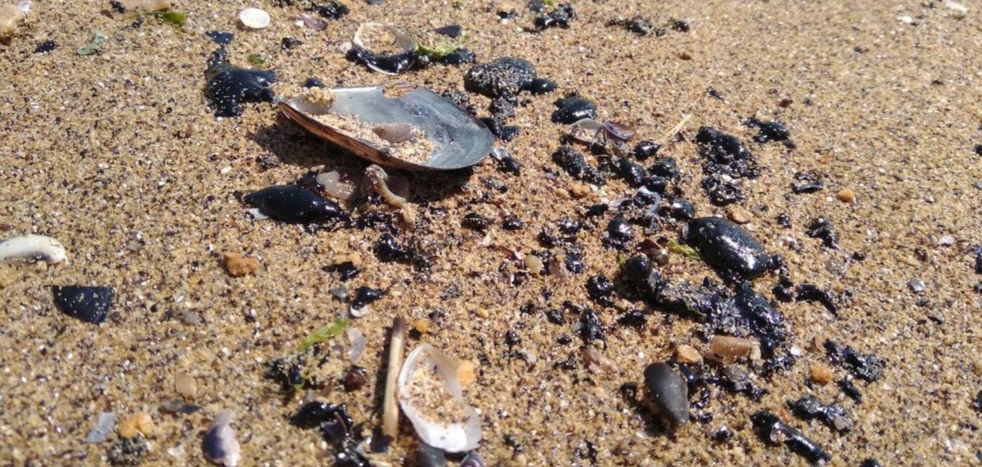 Пляжи стали черными: в Одессе произошла новая экологическая катастрофа
