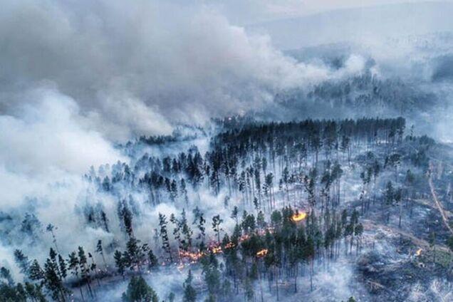Иллюстрация. Пожары в сибирской тайге