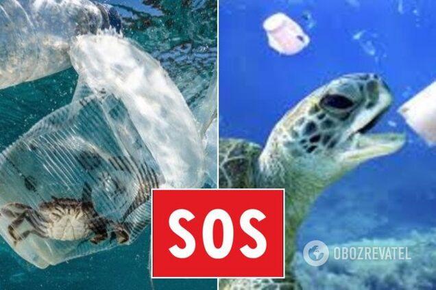 Очищення вод від пластикових відходів