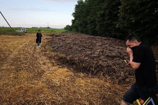 Звалище курей поблизу Києва