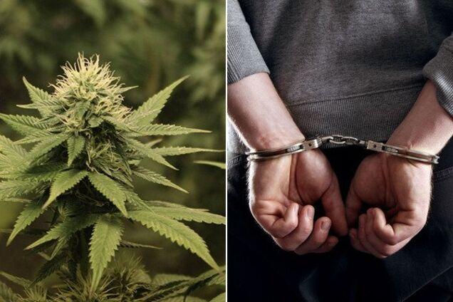 Під Дніпром чоловік організував наркобізнес