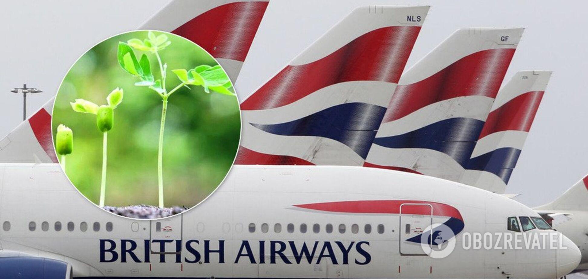 Из мусора: в Британии авиакомпании решились на радикальный шаг