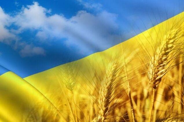Украинский флаг с пшеницей