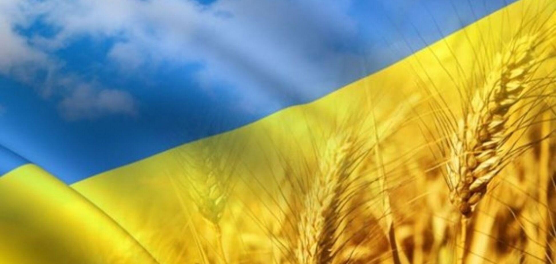 Google посвятил новый дудл Украине: что в нем