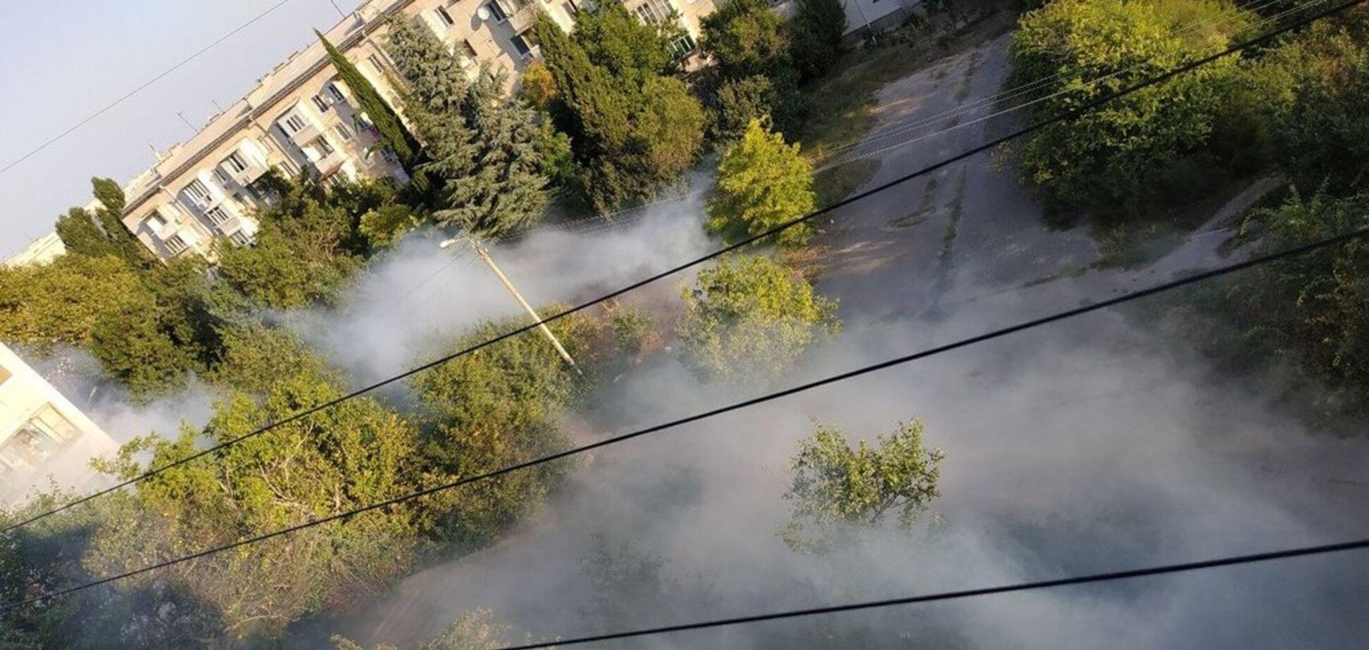 В Крыму оккупанты залили улицы химической отравой. Фото