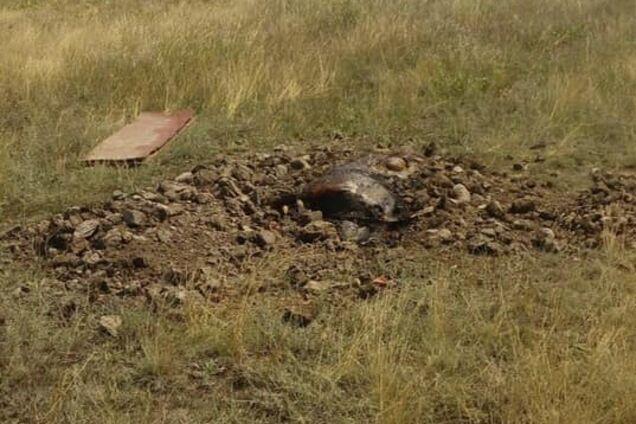 Незаконне і небезпечне поховання виявили мисливці