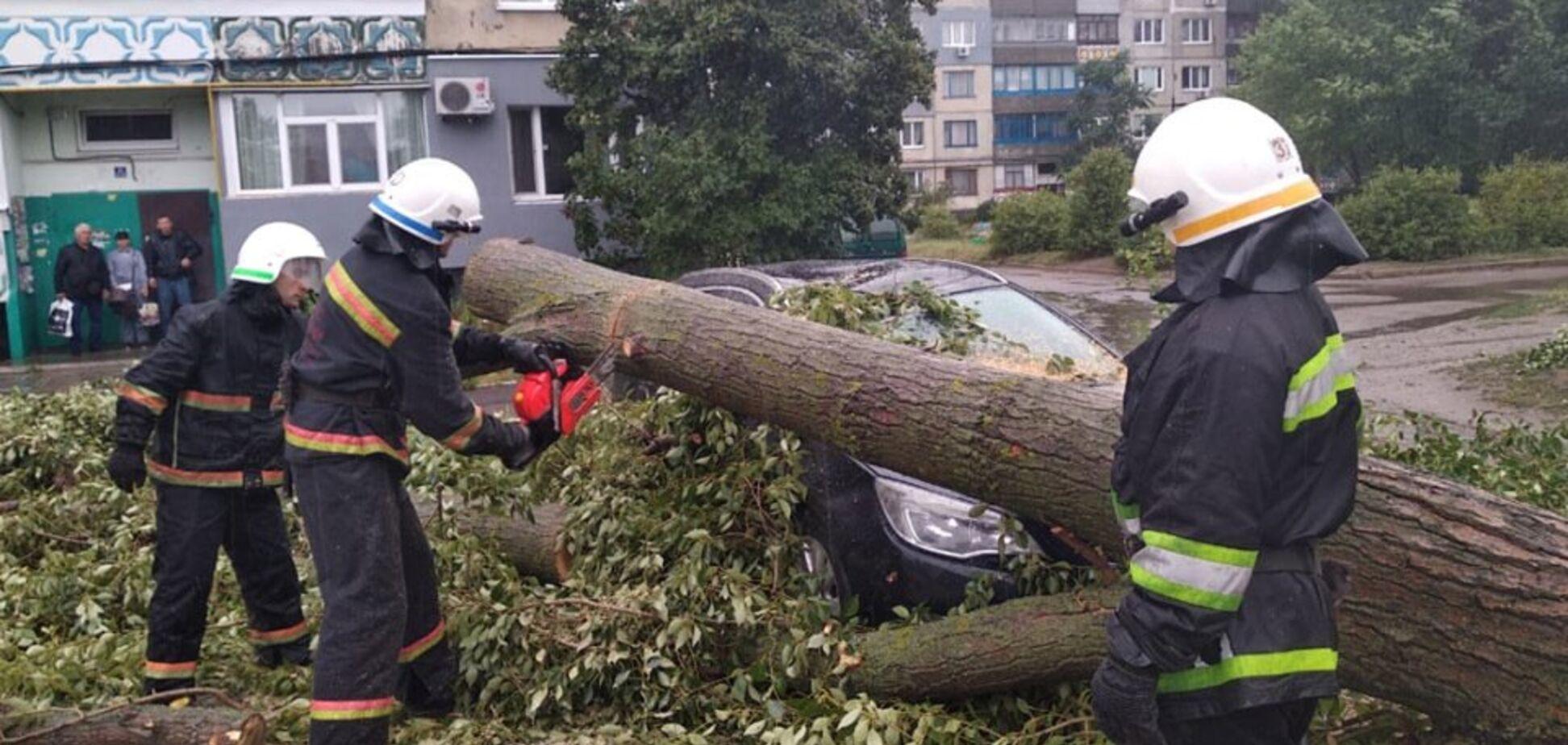 Повалені дерева і затоплені підвали: як Дніпропетровщина пережила бурю