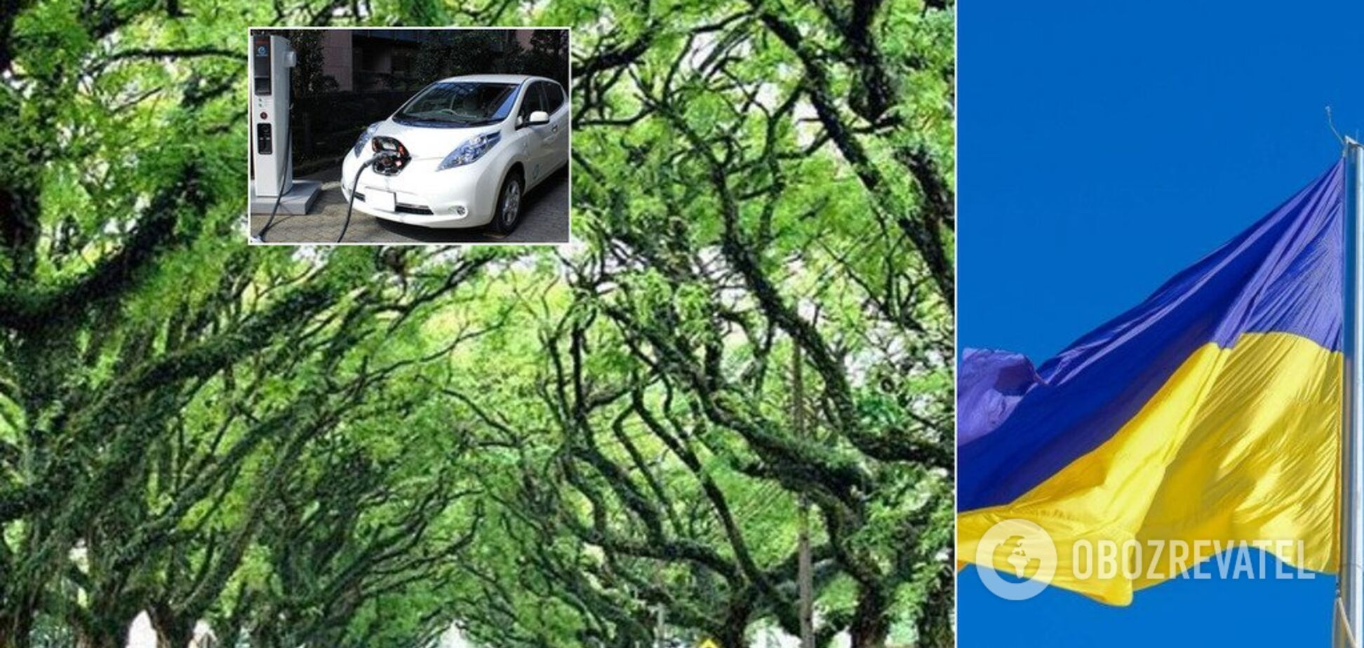 Зеленский подписал закон об электромобилях: что он даст украинцам