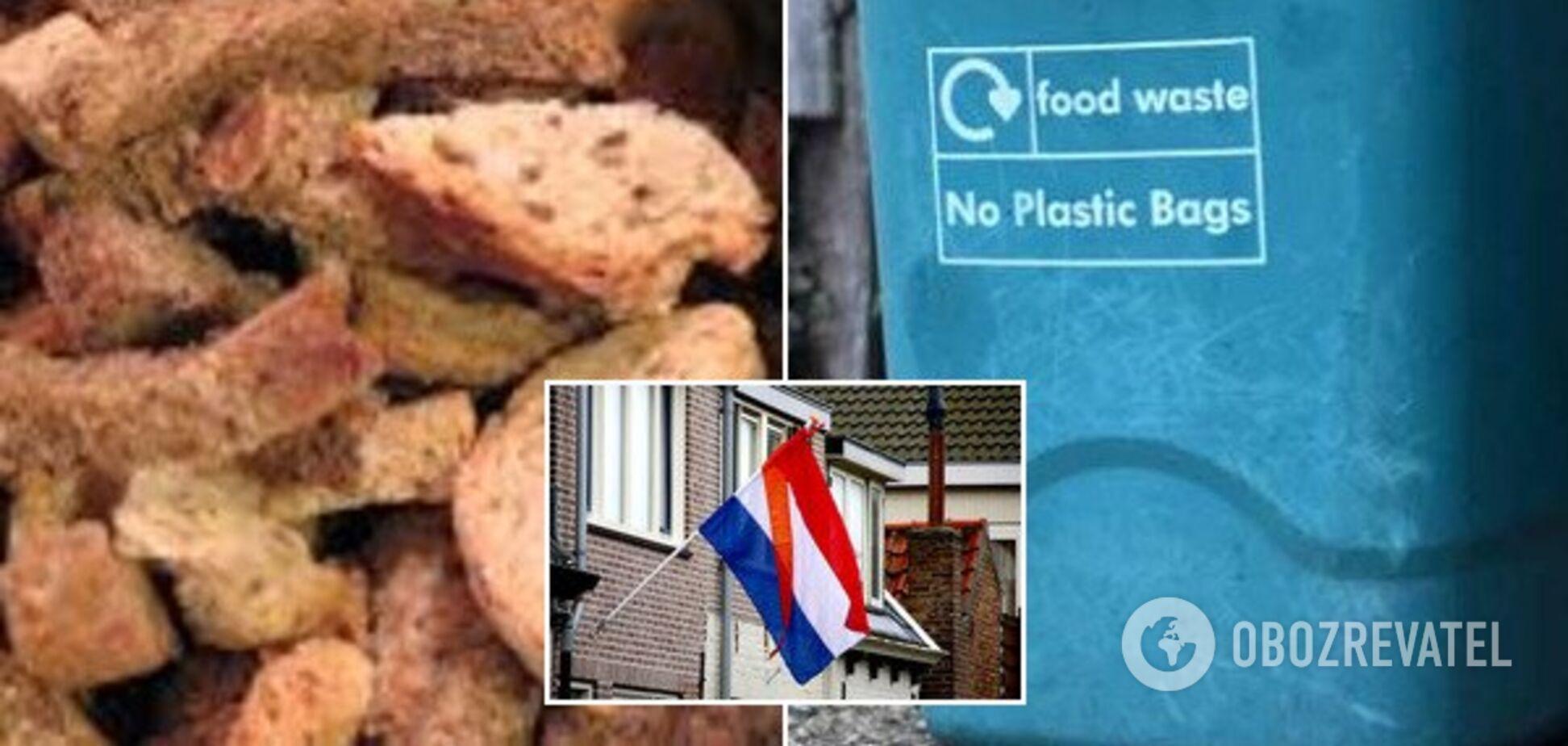 Электроэнергия из хлеба: в Нидерландах сделали невозможное