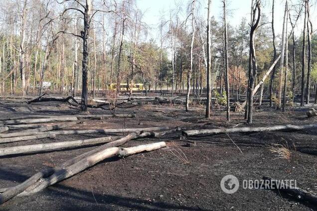 Результат пожежі біля метро у Києві