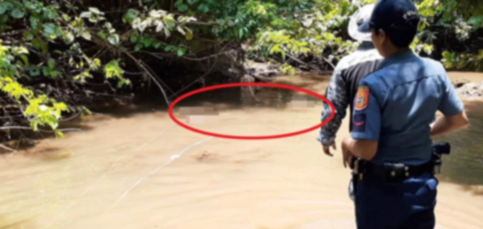 Вгризся у шию: на Філіппінах крокодил живцем з'їв рибалку