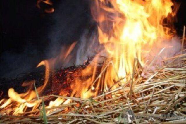 Під Одесою 5-річна дитина живцем згорів в стозі сіна