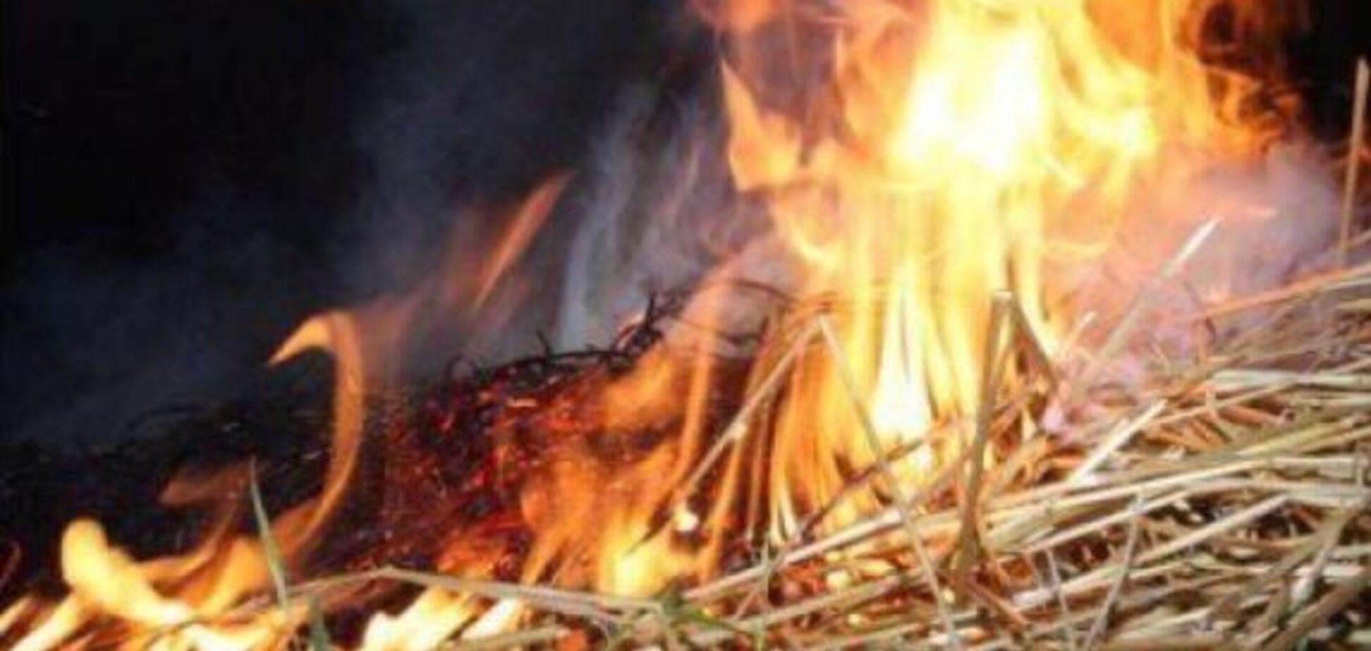 На Одещині 5-річна дитина живцем згорів у стозі сіна