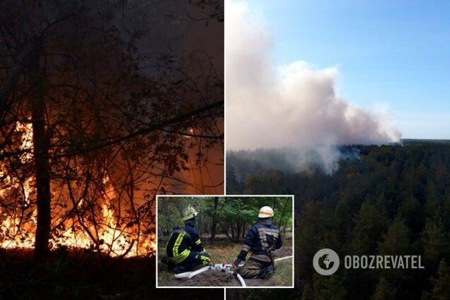 У Дніпропетровській області горить ліс