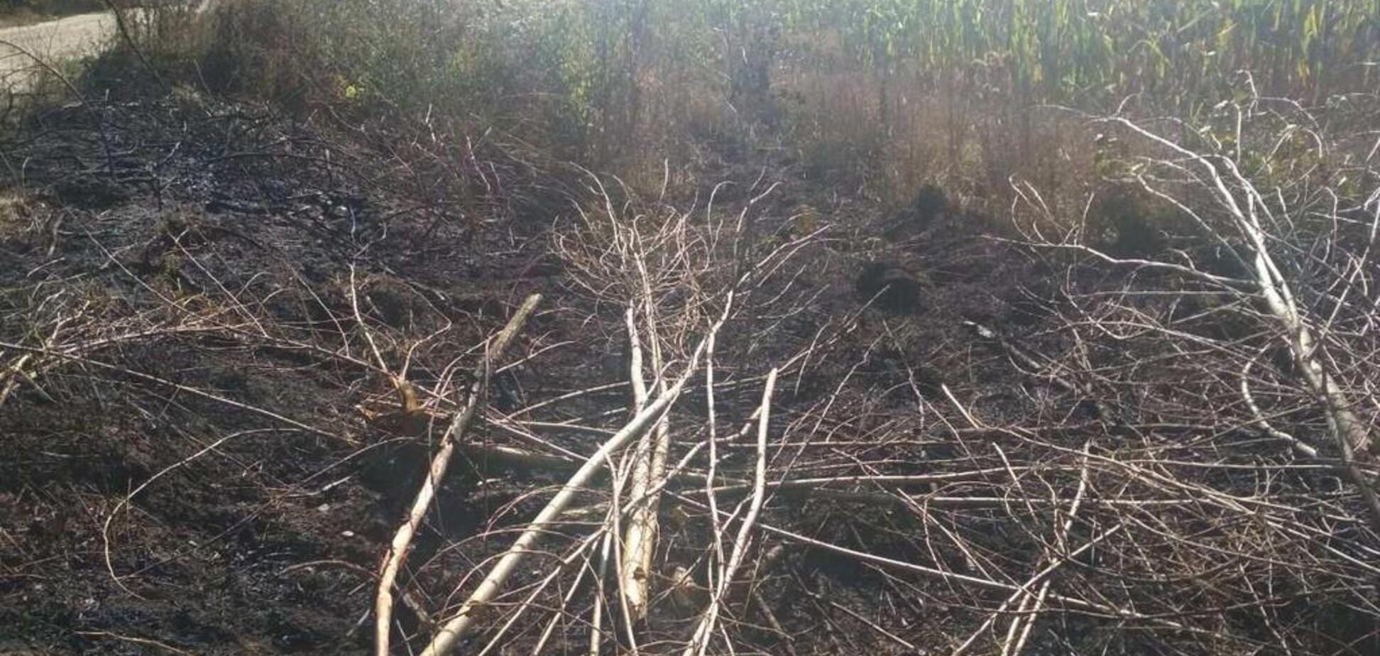 На Київщині через загоряння сухої трави загинули дві особи: всі деталі