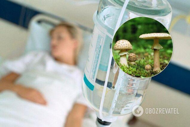 На Буковині трапилося масове отруєння грибами