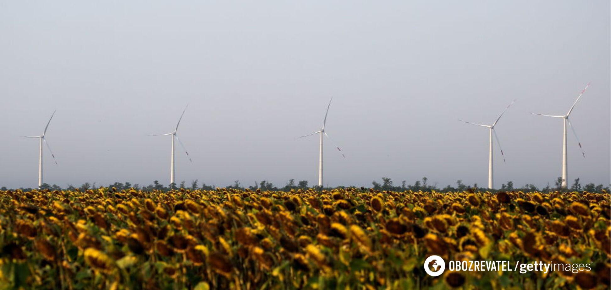 В Украине появился новый крупный игрок на рынке 'зеленой' энергетики