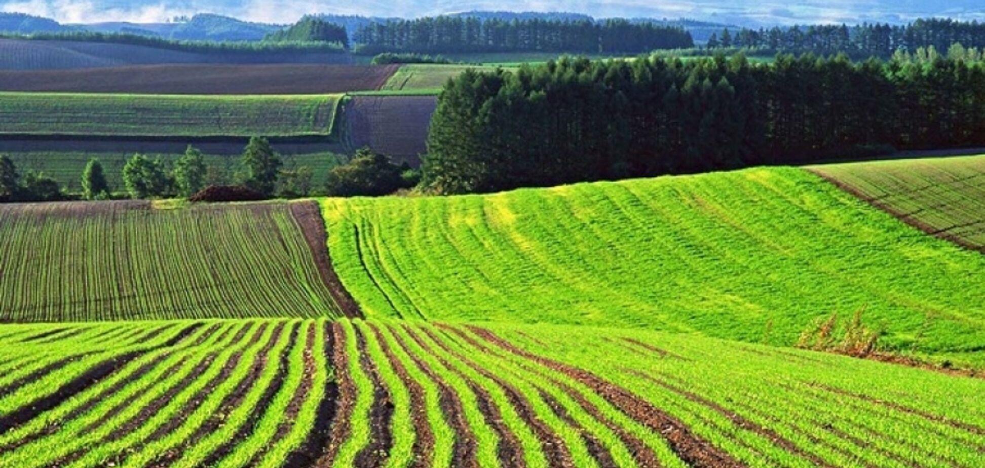 Ринок земель: завершальний геноцид українців