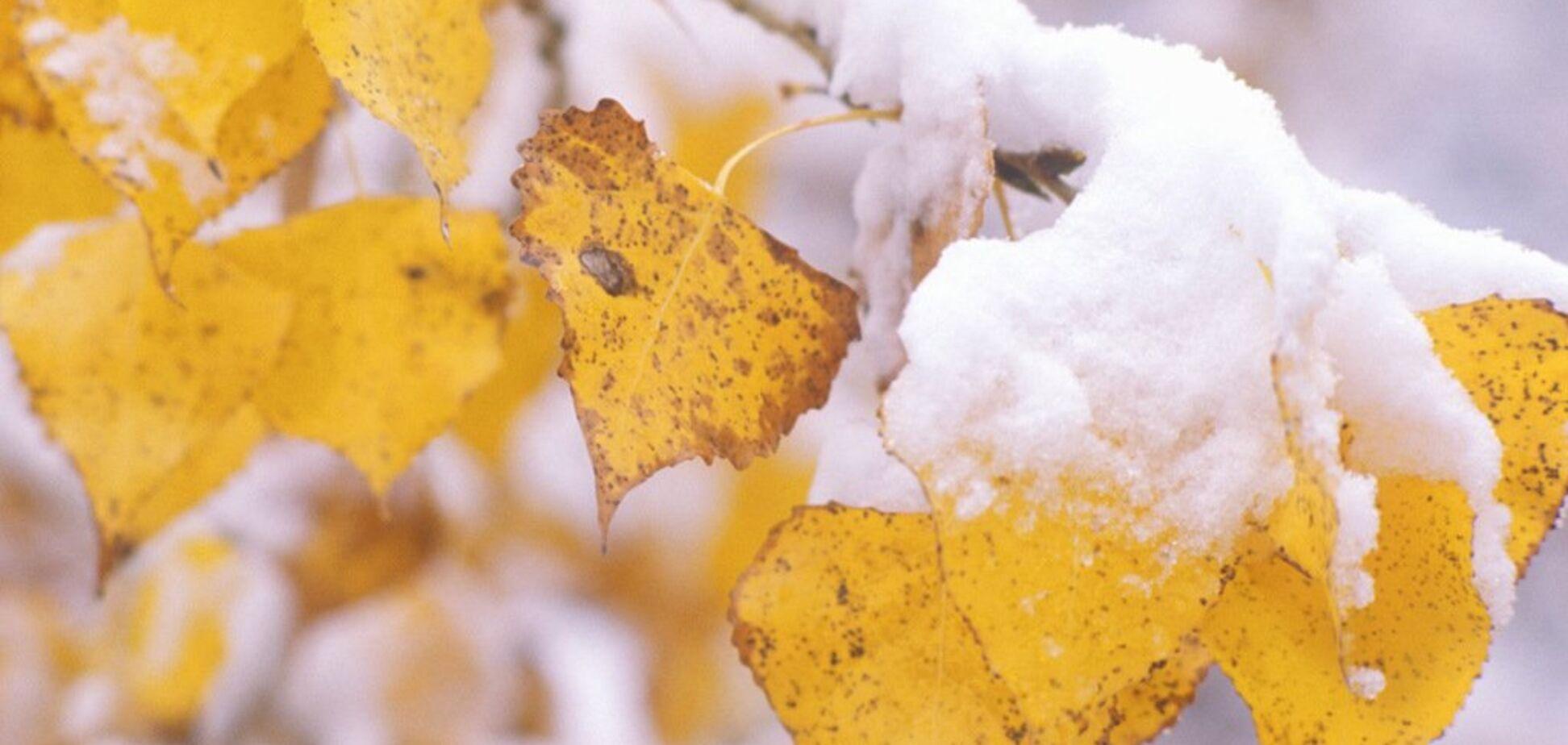 До -3: синоптик предупредила о заморозках и снеге в Украине