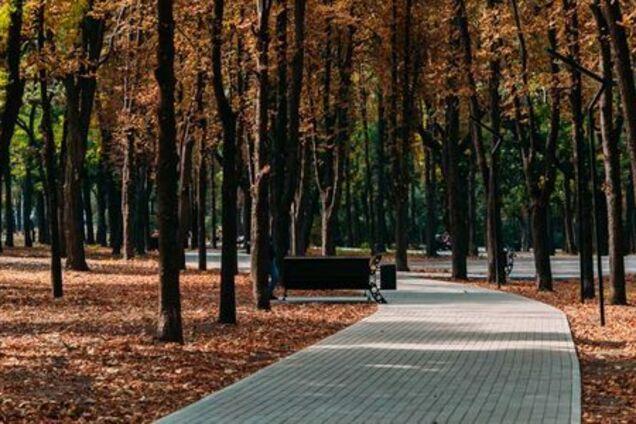 В Днепре вандалы испортили урны в парке Гагарина