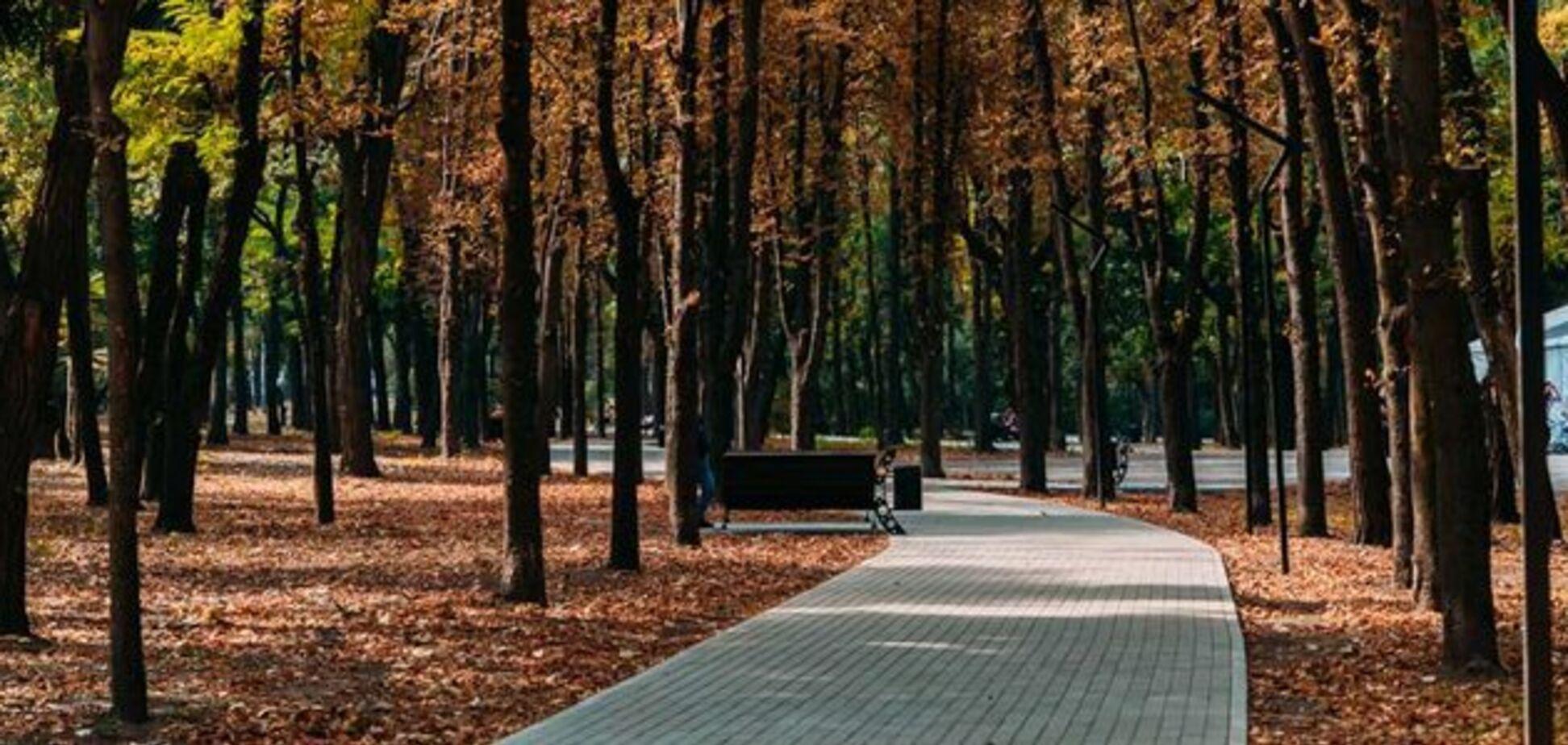 В Днепре вандалы испортили урны в парке Гагарина. Источник: Информатор