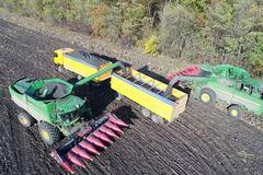 На полях 'Укрлендфармінг' вже зібрали 65% соняшнику та очікують рекордного врожаю
