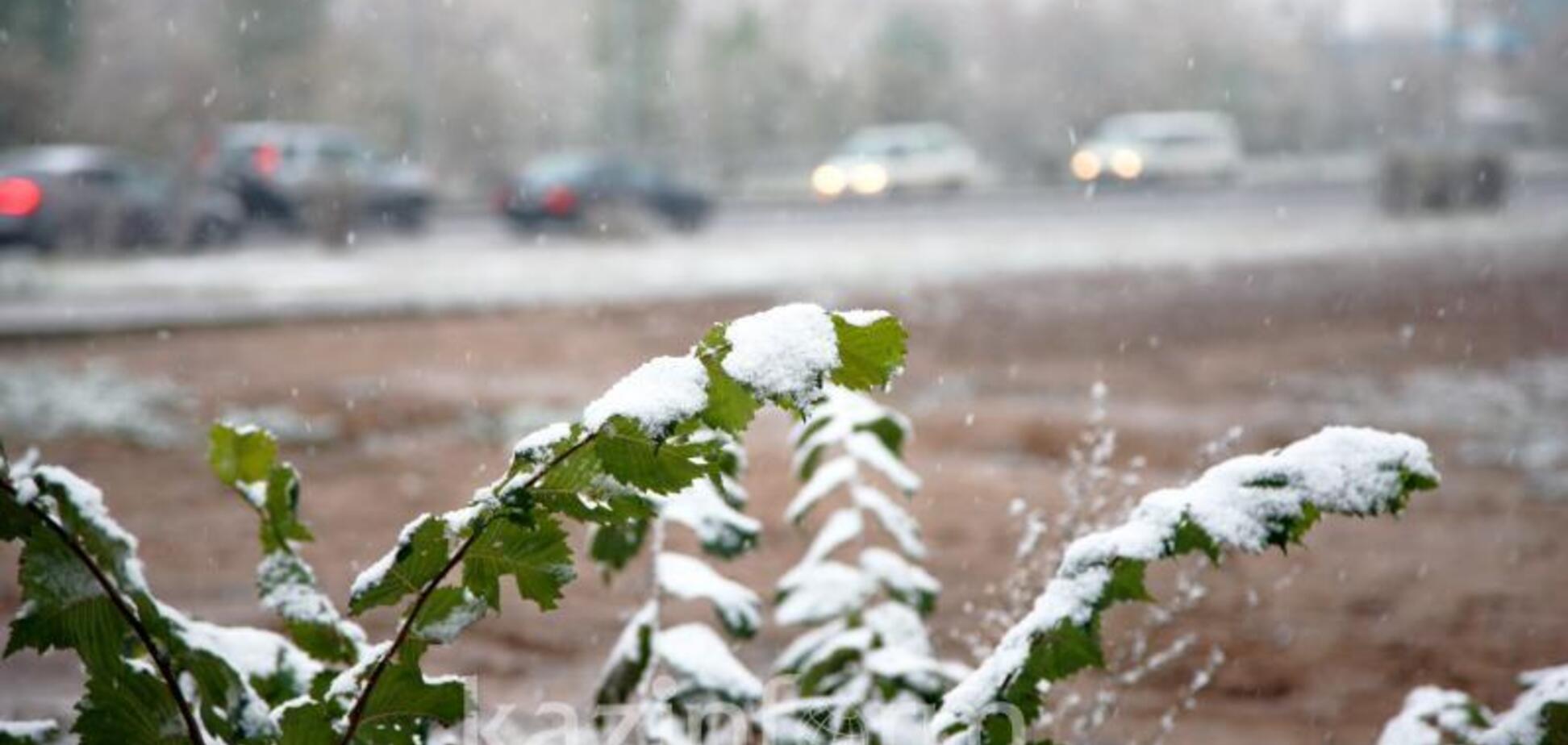 В Украине выпал сентябрьский снег (иллюстрация)