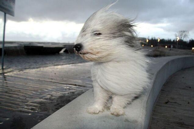 В Днепре резко ухудшится погода: синоптики уточнили прогноз