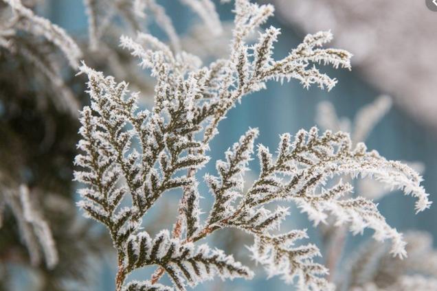 Подих зими: на Україну рухається нова хвиля похолодання
