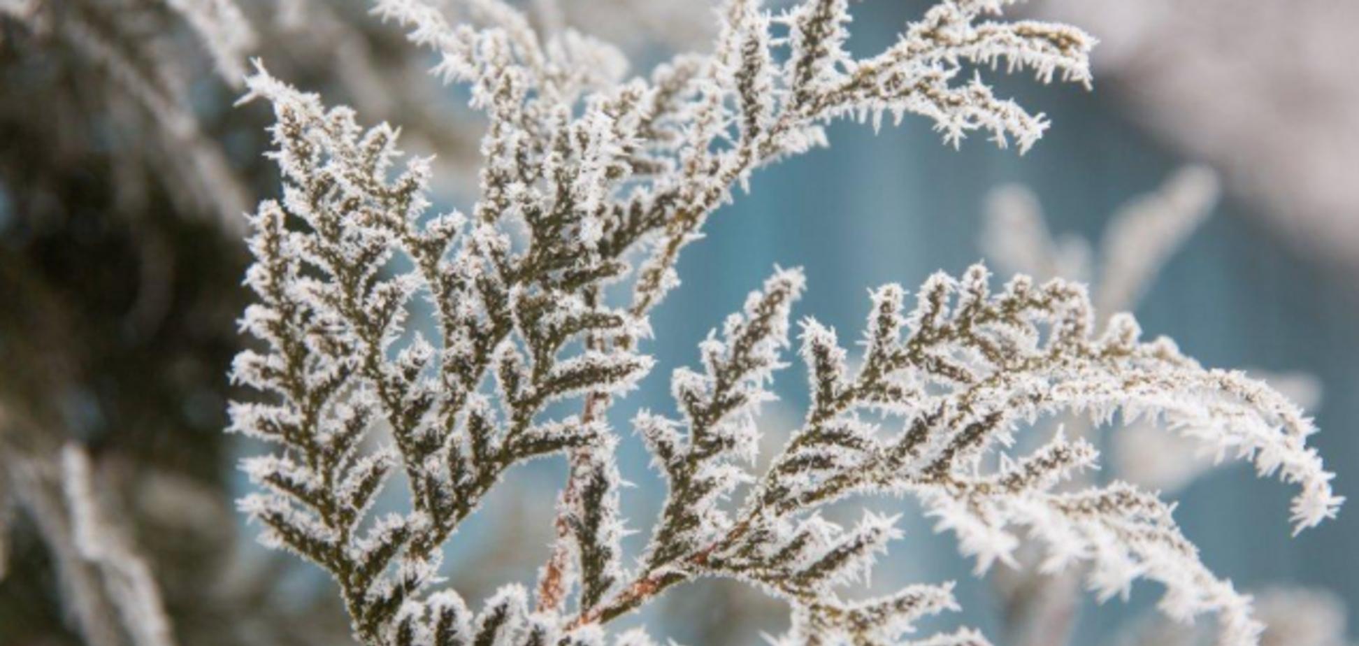 На Украину движется новая волна похолодания