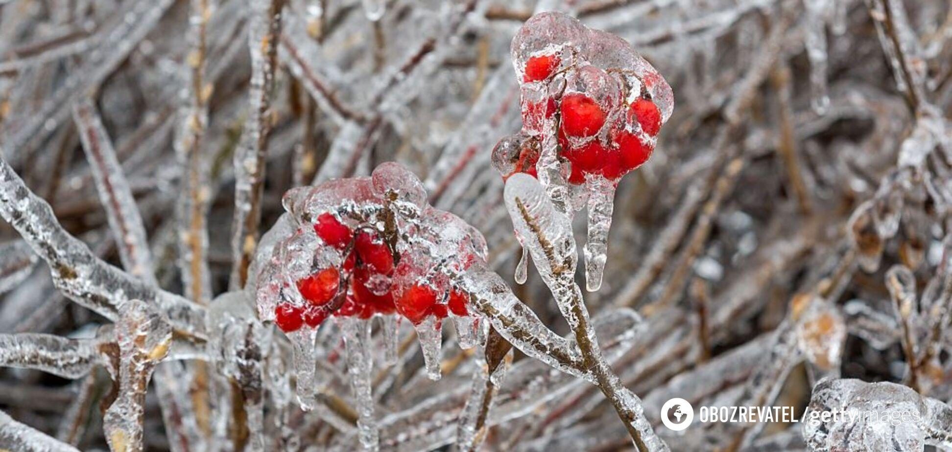 Заморозки и дожди: синоптики предупредили об ухудшении погоды в Украине