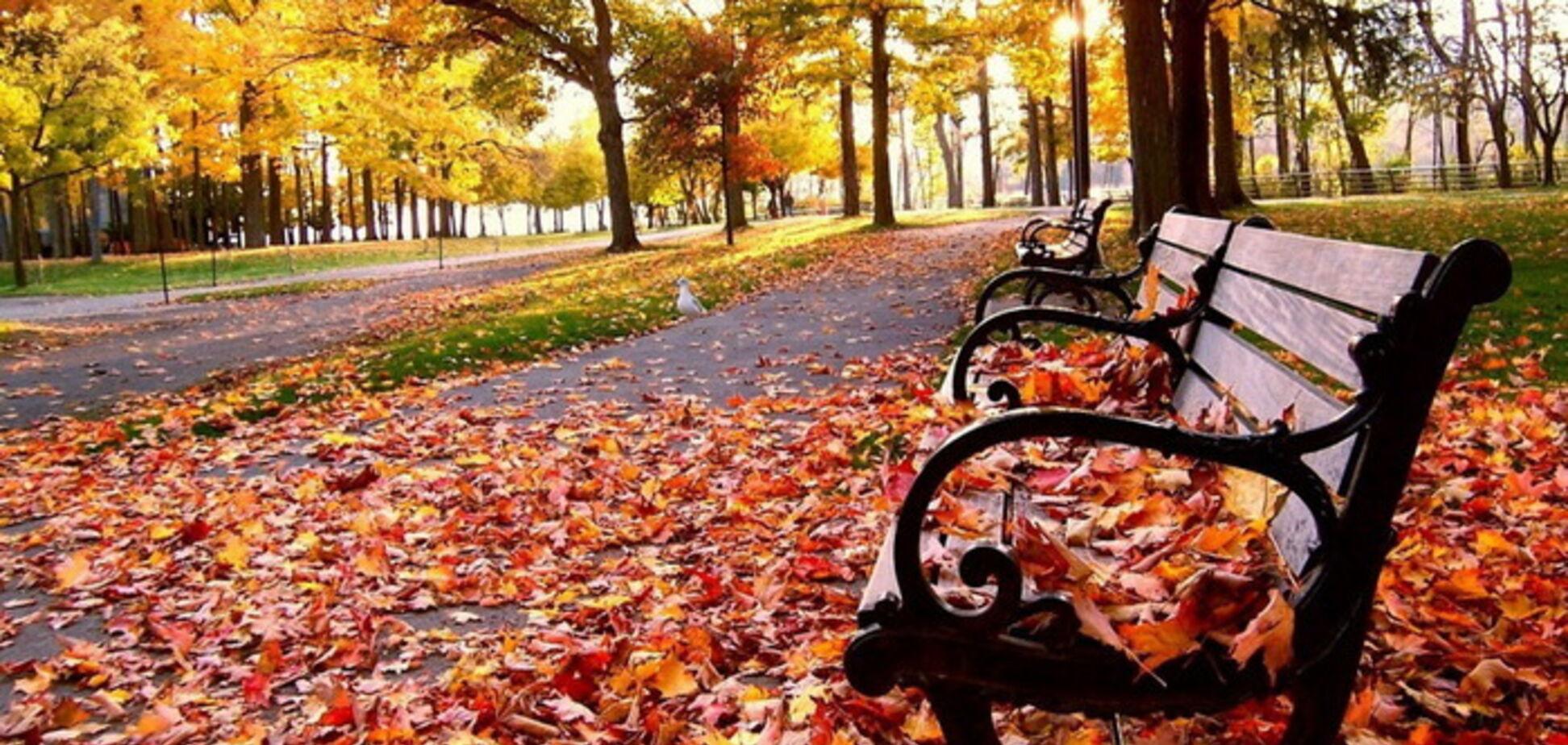 Погода в жовтні: з'явився детальний прогноз по Україні
