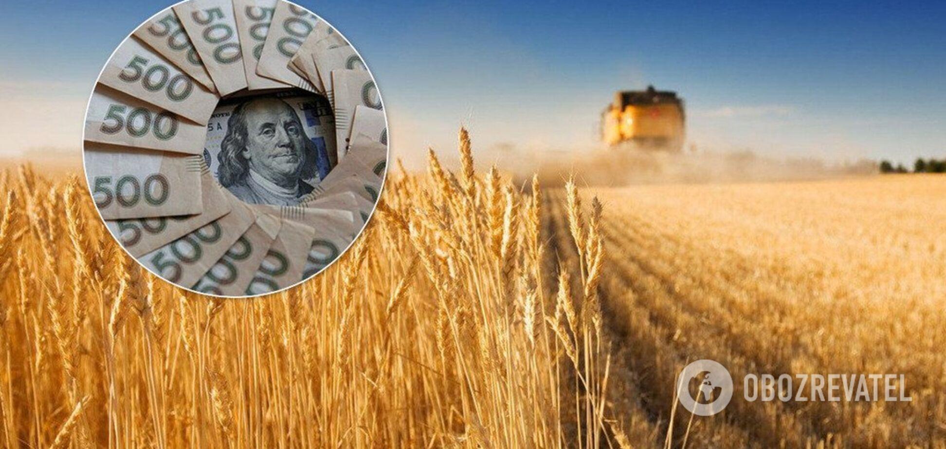 Україна відкриє ринок землі: стало відомо, чого чекати простим фермерам