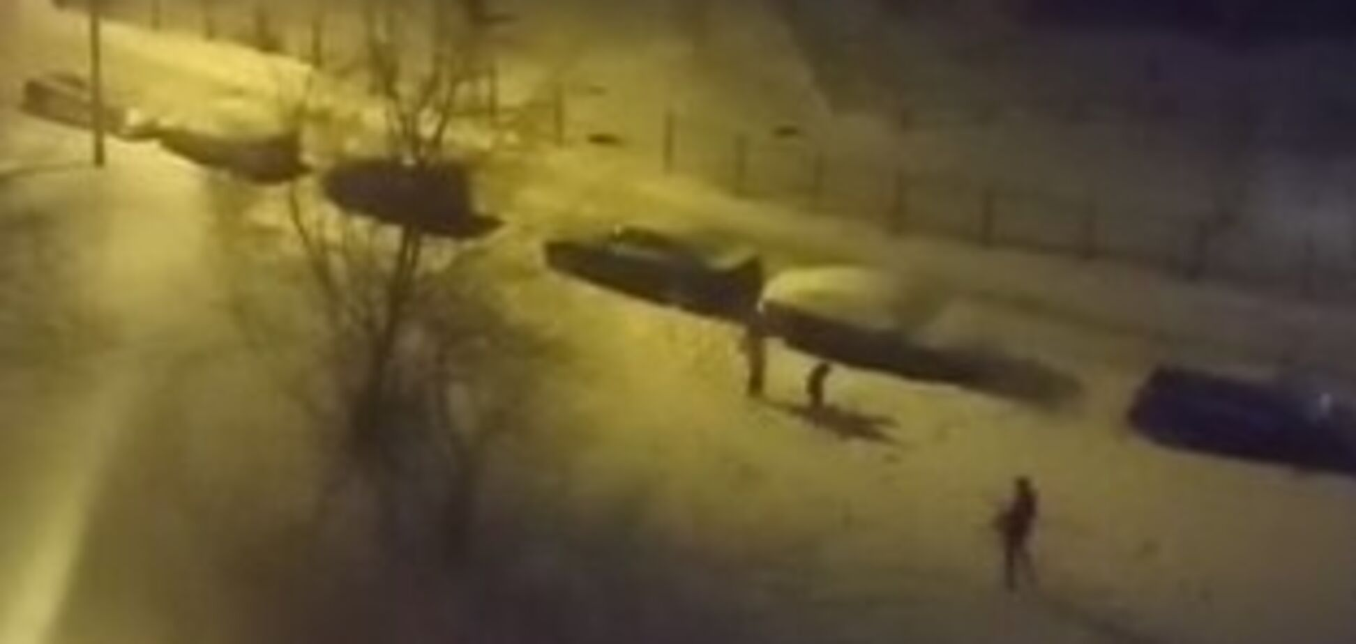 В Россииустроили стрельбу из автомата в Новый год. Источник: Скриншот видео
